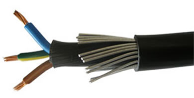 Image for 3 Core Armoured Cable